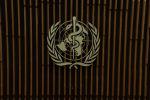 США официально разорвали отношения с ВОЗ: куда пойдут сэкономленные средства?