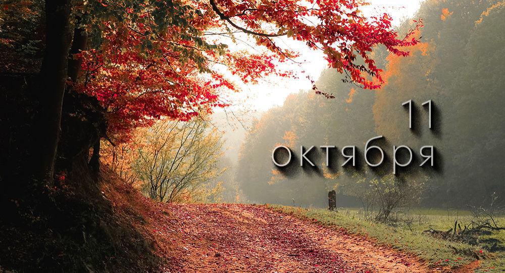 День 11 октября
