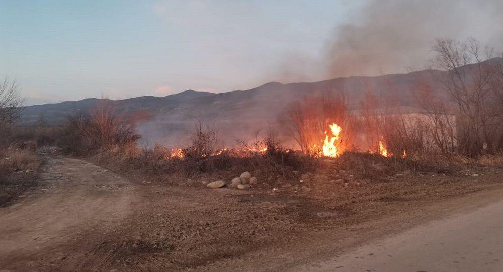 Возгорание сухостоя в Южной Осетии