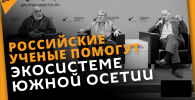 Кавказский барс и новая биостанция: что обсуждали на пресс-конференции в Sputnik
