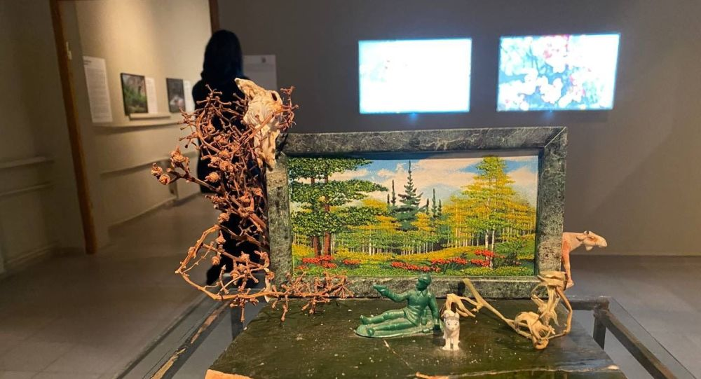 Экспонаты проекта Евгения Уманского на фестивале современного искусства Аланика