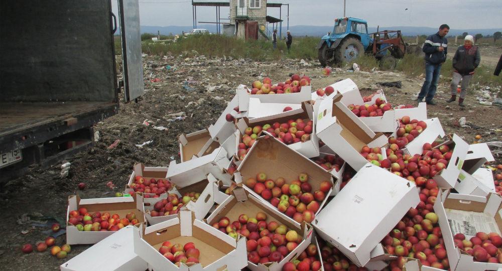Почти 3 тонны санкционных польских яблок уничтожено в Северной Осетии