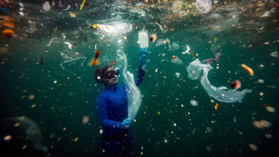 Новая опасность для подводного мира: отходы COVID-19