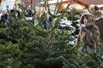 Елочные базары в Москве
