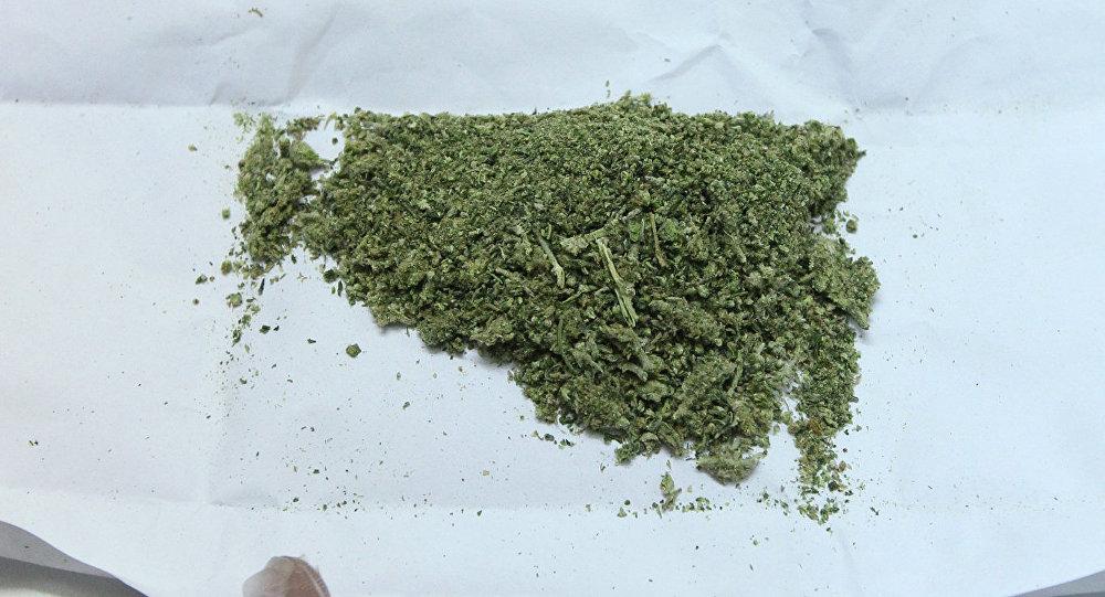 Изъятая марихуана. Архивное фото