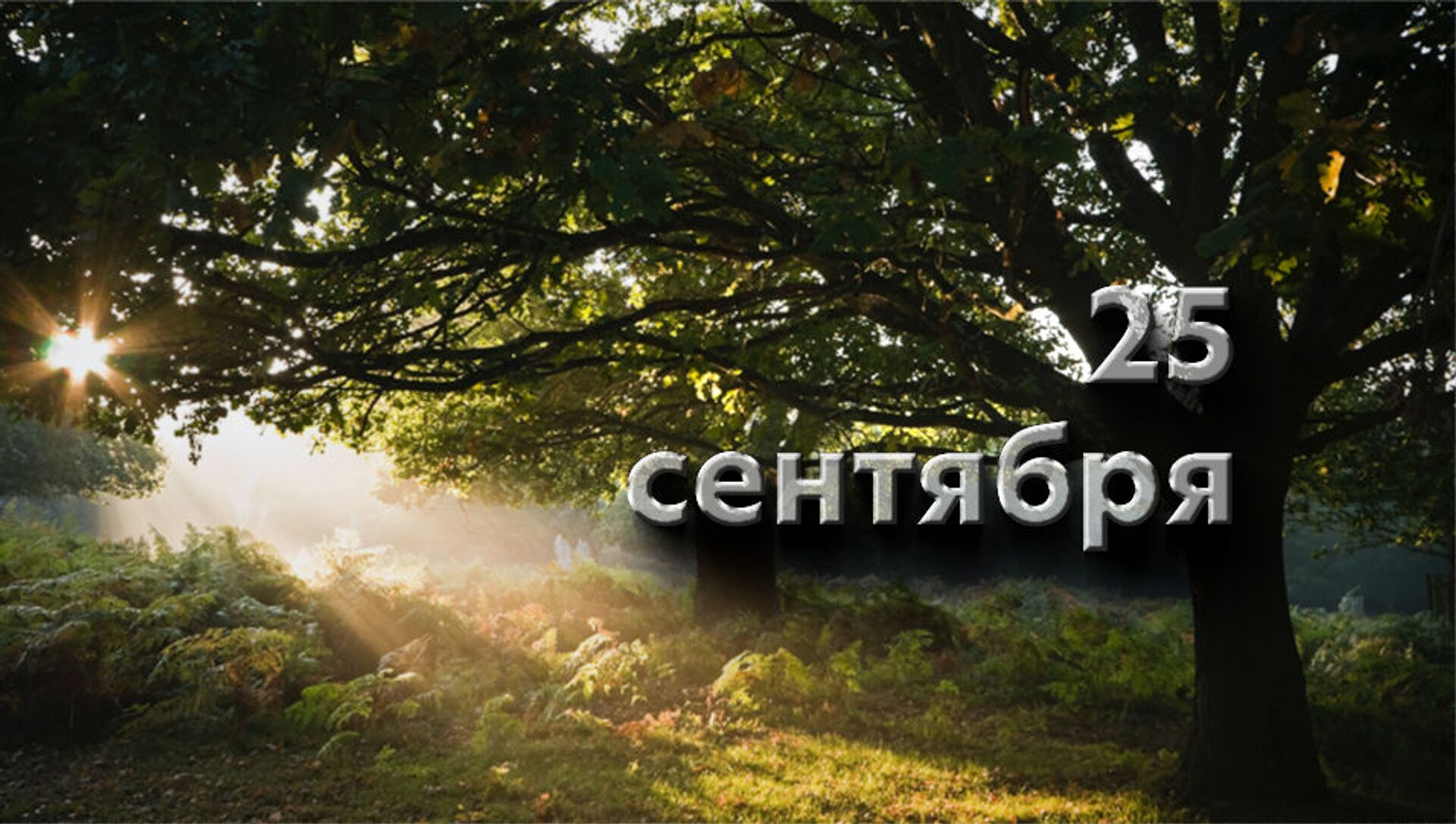 День 25 сентября - Sputnik Южная Осетия, 1920, 24.09.2021