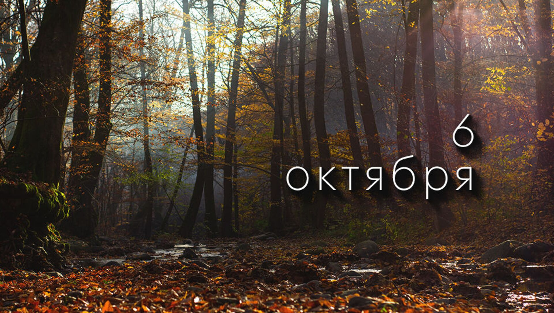 День 6 октября - Sputnik Южная Осетия, 1920, 05.10.2021