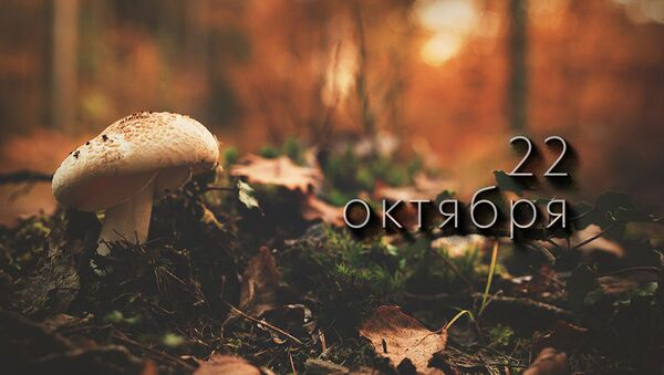 День 22 октября - Sputnik Южная Осетия