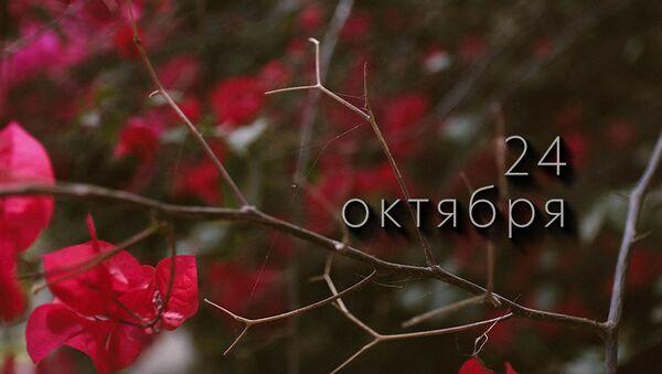День 24 октября - Sputnik Южная Осетия