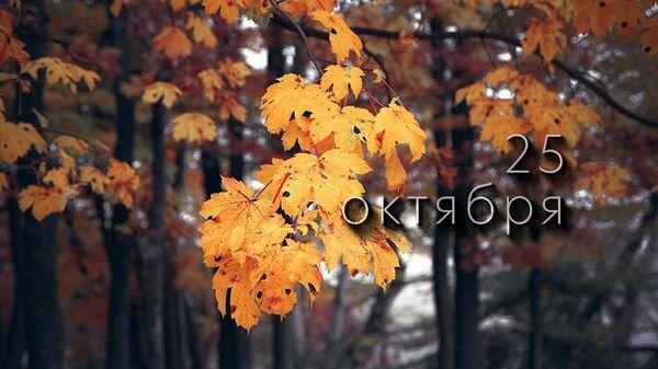 День 25 октября - Sputnik Южная Осетия