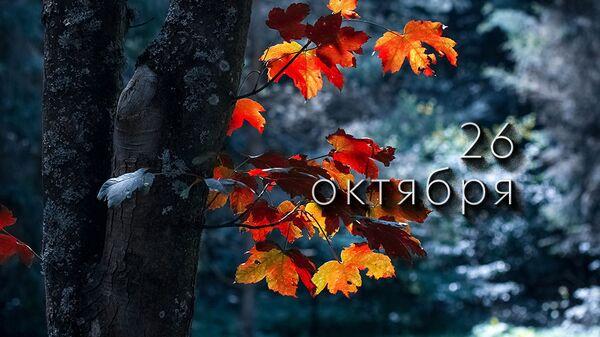 День 26 октября - Sputnik Южная Осетия