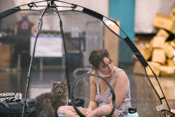 Женщина с кошкой отдыхают в прохладном помещении конференц-центра в Орегоне, США - Sputnik Южная Осетия