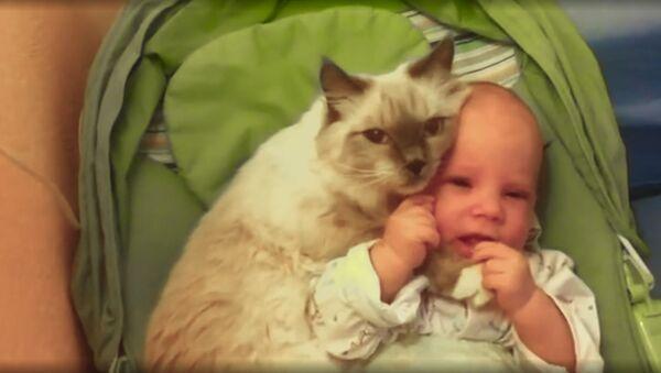 кошка не хочет отпускать малышку из своих объятий - Sputnik Южная Осетия