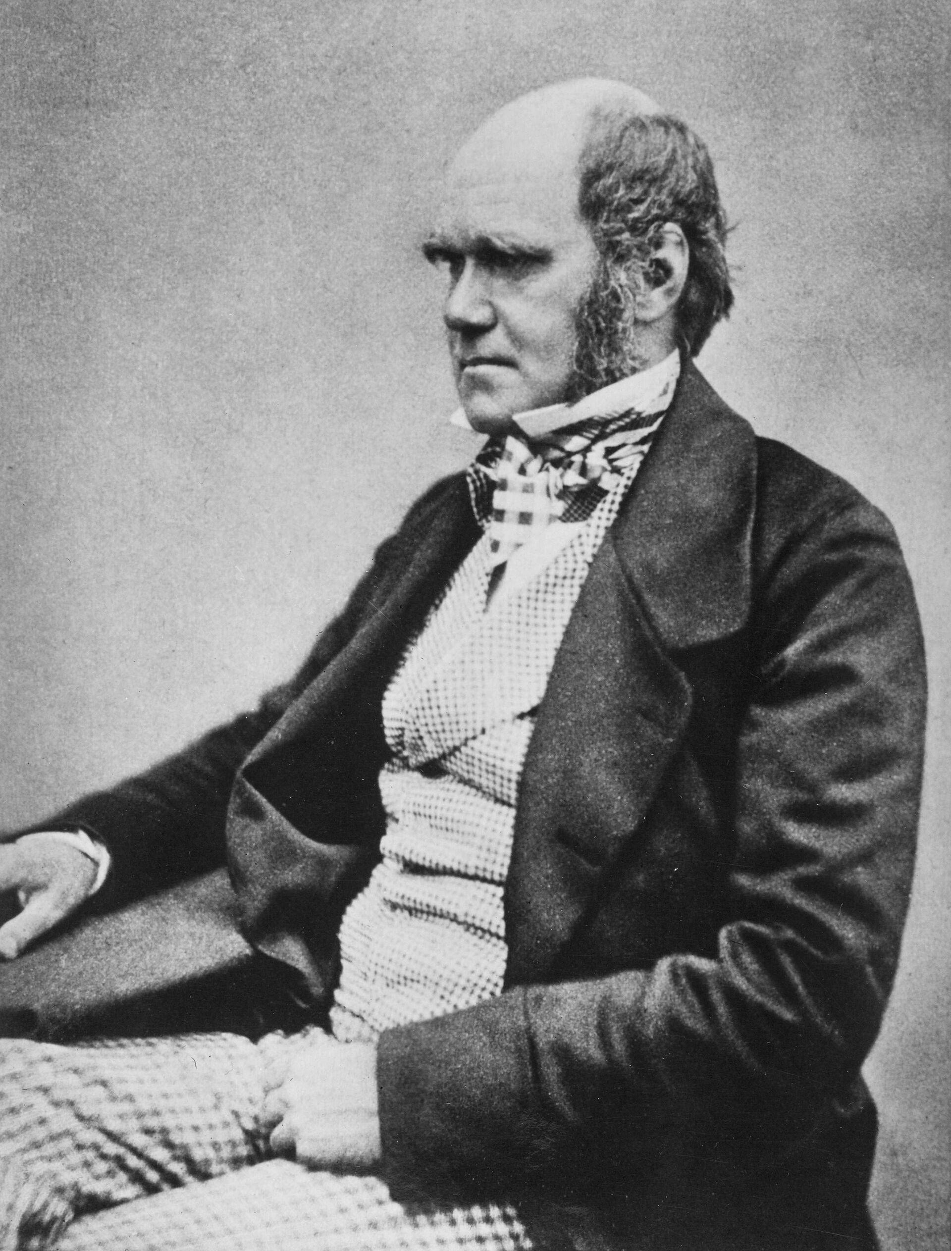 Чарльз Роберт Дарвин в 1854 году - Sputnik Южная Осетия, 1920, 26.10.2021